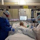 Covid, i ricercatori Usa: «I casi gravi sviluppano una risposta immunitaria più forte, difficile che si ammalino due volte»