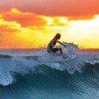 Australia, prove di normalità: nelle spiagge di Sydney tornano i surfisti