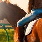 Scoprire la Tuscia a cavallo, un viaggio per il corpo e l'anima