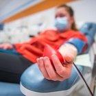 Covid, bocciata la cura col plasma? L'infettivologo Menichetti: «48 studi, dati clinici modesti»