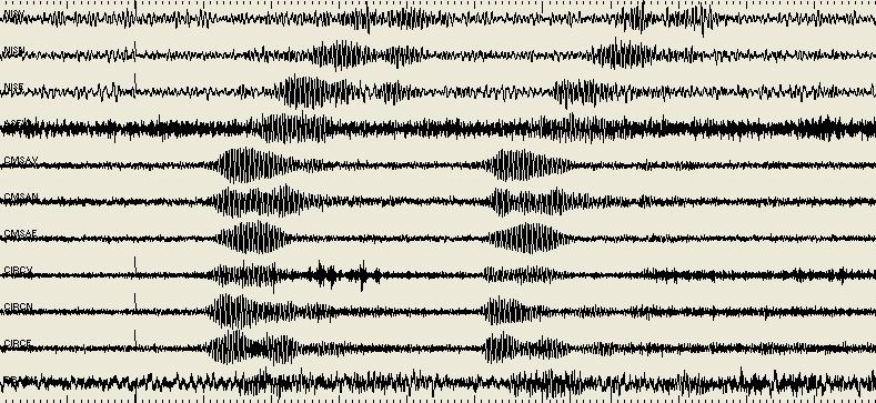 Champions l 39 urlo del san paolo come un terremoto for Istituto grafico pubblicitario milano