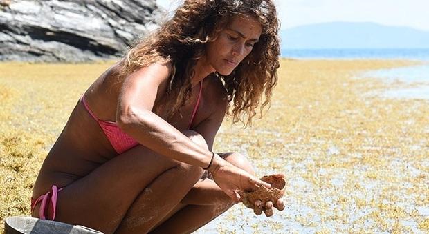 Isola dei Famosi 2017: Rocco contro Samantha