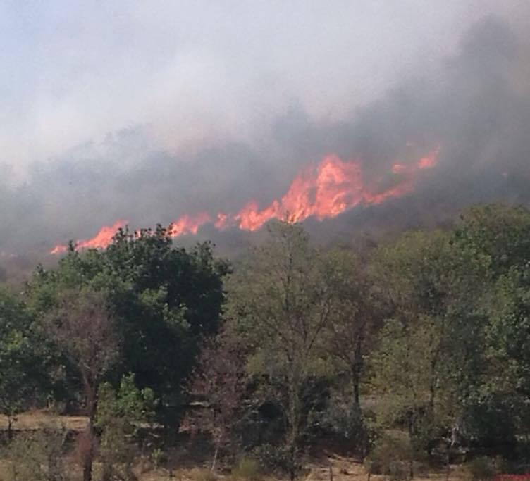 La provincia di Roma brucia: 2 morti a Tivoli, fiamme sulla Pontina