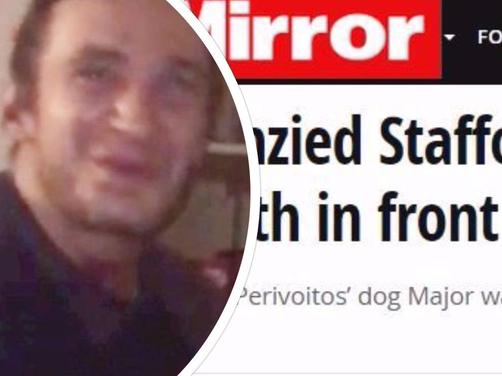Tragedia a Londra, cane ingerisce crack e uccide il padrone