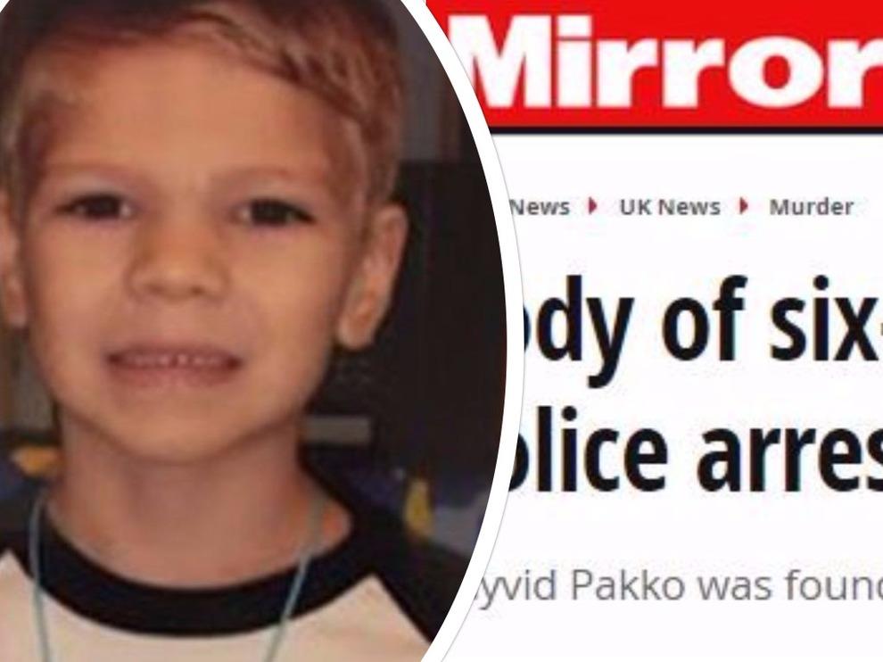 Bimbo di 8 anni aggredito da un puma si salva colpendolo con