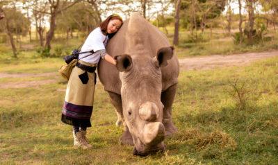 Muore l'ultimo esemplare maschio di rinoceronte settentrionale bianco