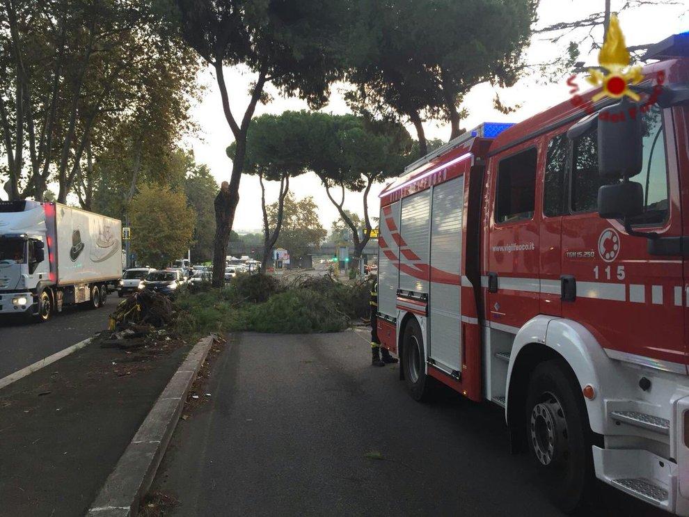 Scuole chiuse Roma, confermata anche per martedì 30 ottobre 2018