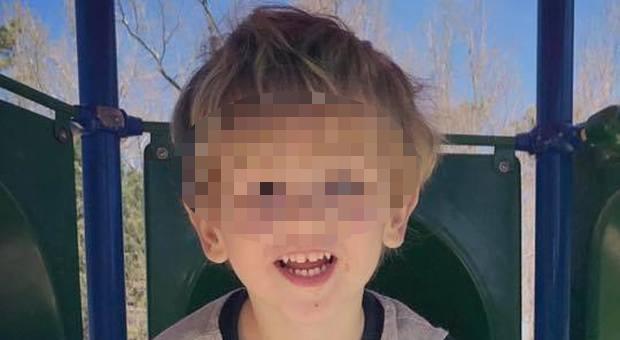 Un bambino ha raccontato di essere stato salvato da un orso