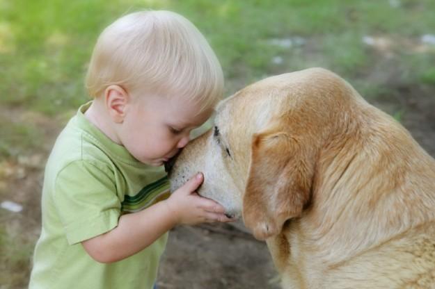 Avere un cane da bimbi riduce i rischi di schizofrenia da adulti, lo studio: «Con il gatto l'effetto non si osserva»